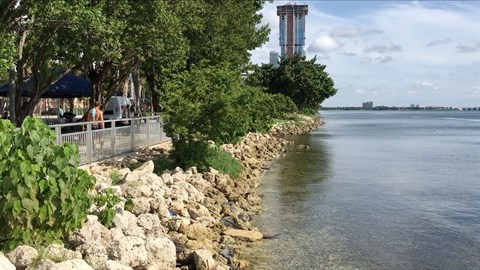 Seawall in Miami